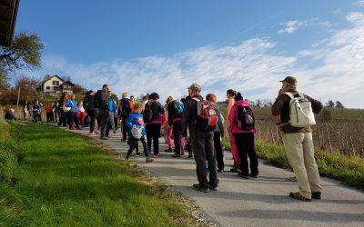 Planinski pohod na Bukovec