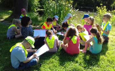 Učenci 2.c in 2.e razreda smo del petkovega dopoldneva preživeli na vrtu družine Nekrep