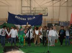 bozicna-zelja-12