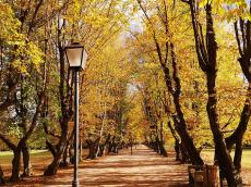 park-slovenska-bistrica-3